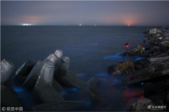 东营沿海现荧光海滩 海水宛如阿凡达世界